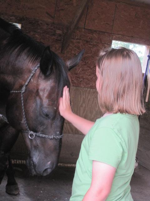 HR horse mc